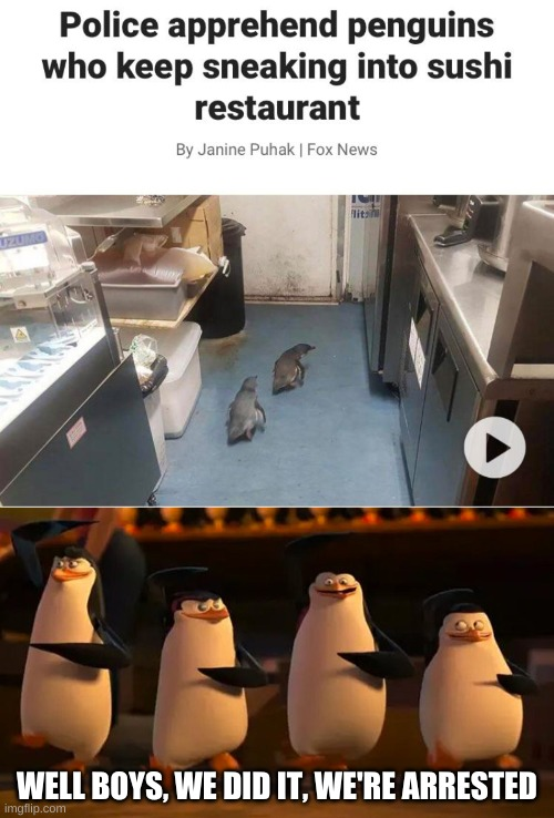 Well boys, we did it |  WELL BOYS, WE DID IT, WE'RE ARRESTED | image tagged in penguins of madagascar,memes | made w/ Imgflip meme maker