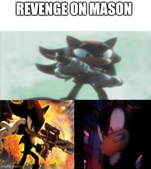 Mason is a bitch ass mother fucker |  REVENGE ON MASON | image tagged in blank white template,shadow the hedgehog,memes,funny,sonic | made w/ Imgflip meme maker