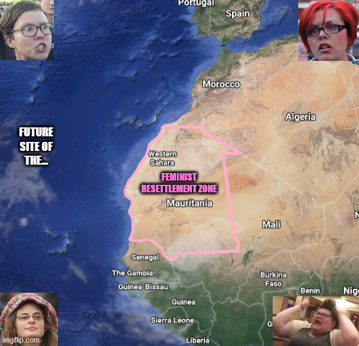 A Glorious and Enlightened Progressive Utopia |  FUTURE SITE OF THE... FEMINIST RESETTLEMENT ZONE | image tagged in feminists,map,africa,progressive,memes,leftists | made w/ Imgflip meme maker