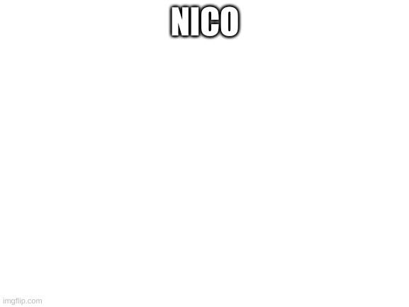 blank white template |  NICO | image tagged in blank white template | made w/ Imgflip meme maker