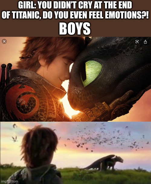 GIRL: YOU DIDN'T CRY AT THE END OF TITANIC, DO YOU EVEN FEEL EMOTIONS?! BOYS | image tagged in httyd | made w/ Imgflip meme maker