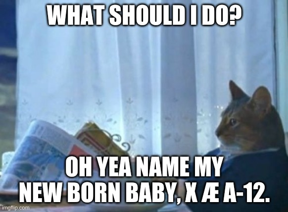 I Should Buy A Boat Cat |  WHAT SHOULD I DO? OH YEA NAME MY NEW BORN BABY, X Æ A-12. | image tagged in memes,i should buy a boat cat | made w/ Imgflip meme maker
