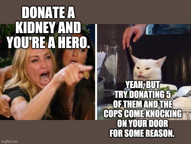 Smudge the cat |  DONATE A KIDNEY AND YOU'RE A HERO. YEAH, BUT TRY DONATING 5 OF THEM AND THE COPS COME KNOCKING ON YOUR DOOR FOR SOME REASON. | image tagged in smudge the cat | made w/ Imgflip meme maker