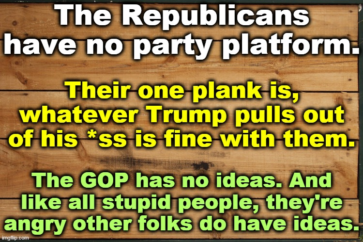 The Republican National Committee states that it agrees with everything Donald Trump has done and will do. That's it. Period. |  The Republicans have no party platform. Their one plank is, whatever Trump pulls out of his *ss is fine with them. The GOP has no ideas. And like all stupid people, they're angry other folks do have ideas. | image tagged in trump,gop,republicans,bankruptcy,empty,head | made w/ Imgflip meme maker