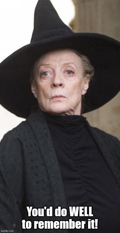 McGonagall | You'd do WELL to remember it! | image tagged in mcgonagall | made w/ Imgflip meme maker