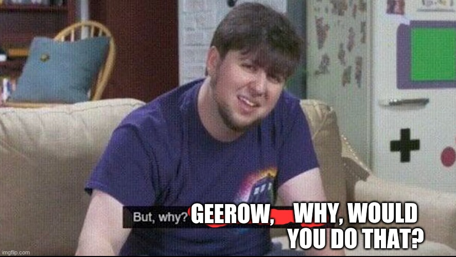 But why why would you do that? | WHY, WOULD YOU DO THAT? GEEROW, | image tagged in but why why would you do that | made w/ Imgflip meme maker