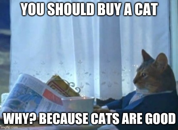I Should Buy A Boat Cat |  YOU SHOULD BUY A CAT; WHY? BECAUSE CATS ARE GOOD | image tagged in memes,i should buy a boat cat | made w/ Imgflip meme maker
