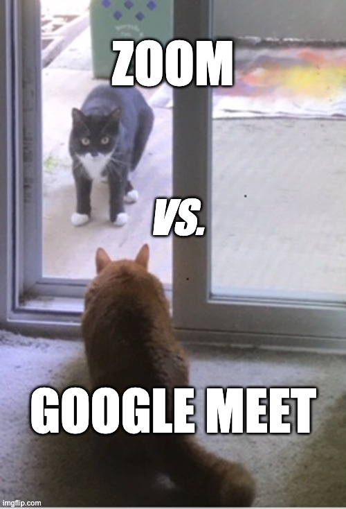 Google Meet vs. Zoom |  ZOOM; VS. GOOGLE MEET | image tagged in cats,google,zoom,teachers | made w/ Imgflip meme maker