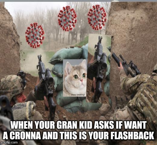 Cats War Memes Gifs Imgflip