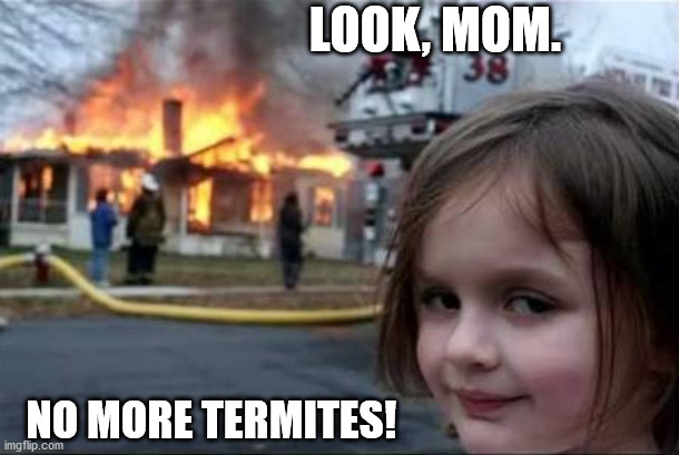 Look, Mom. No hands. |  LOOK, MOM. NO MORE TERMITES! | image tagged in burning house girl,funny,memes,burn,house,evil | made w/ Imgflip meme maker