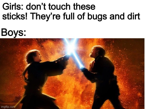 Girls vs boys |  Girls: don't touch these sticks! They're full of bugs and dirt; Boys: | image tagged in boys vs girls,stick,star wars | made w/ Imgflip meme maker