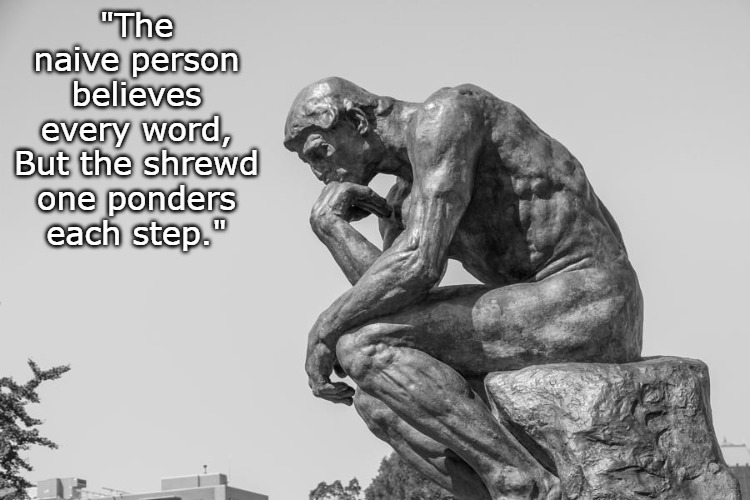 "Ponder Each Step |  ""The naive person believes every word, But the shrewd one ponders each step."" 