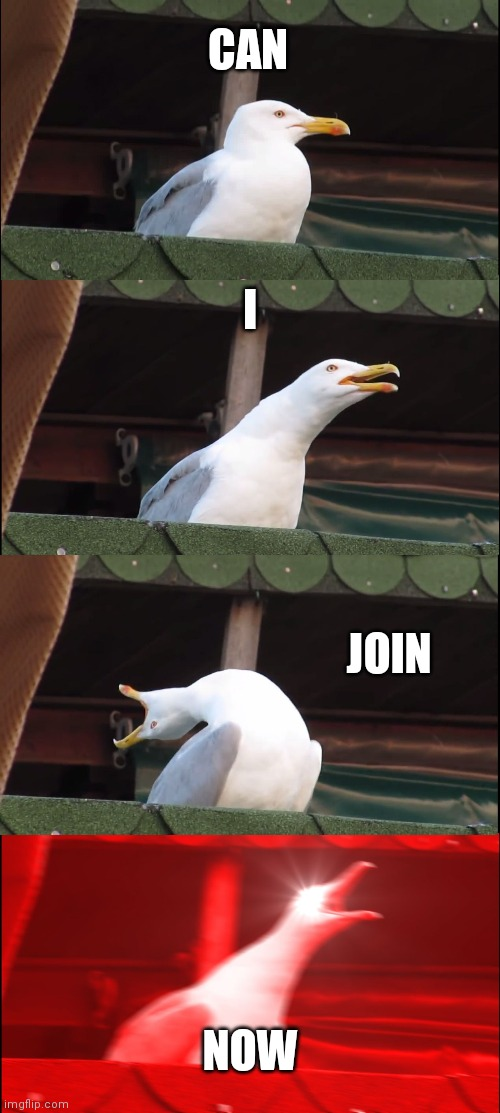 I want in |  CAN; I; JOIN; NOW | image tagged in memes,inhaling seagull | made w/ Imgflip meme maker