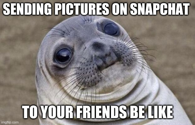 Awkward Moment Sealion |  SENDING PICTURES ON SNAPCHAT; TO YOUR FRIENDS BE LIKE | image tagged in memes,awkward moment sealion | made w/ Imgflip meme maker