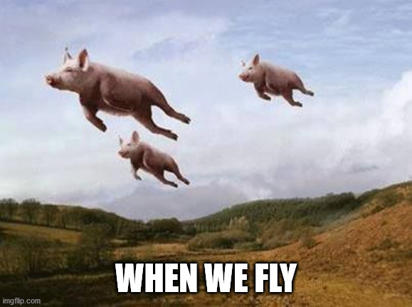 Pigs Fly | WHEN WE FLY | image tagged in pigs fly | made w/ Imgflip meme maker