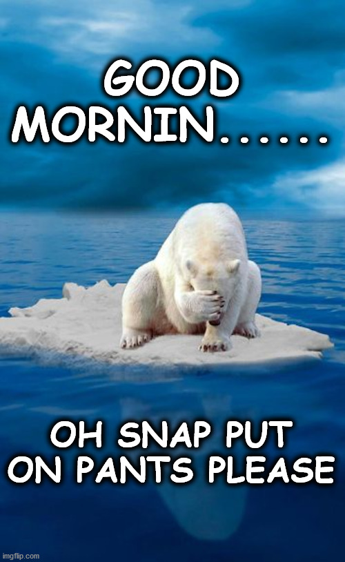 bear |  GOOD MORNIN...... OH SNAP PUT ON PANTS PLEASE | image tagged in bear | made w/ Imgflip meme maker