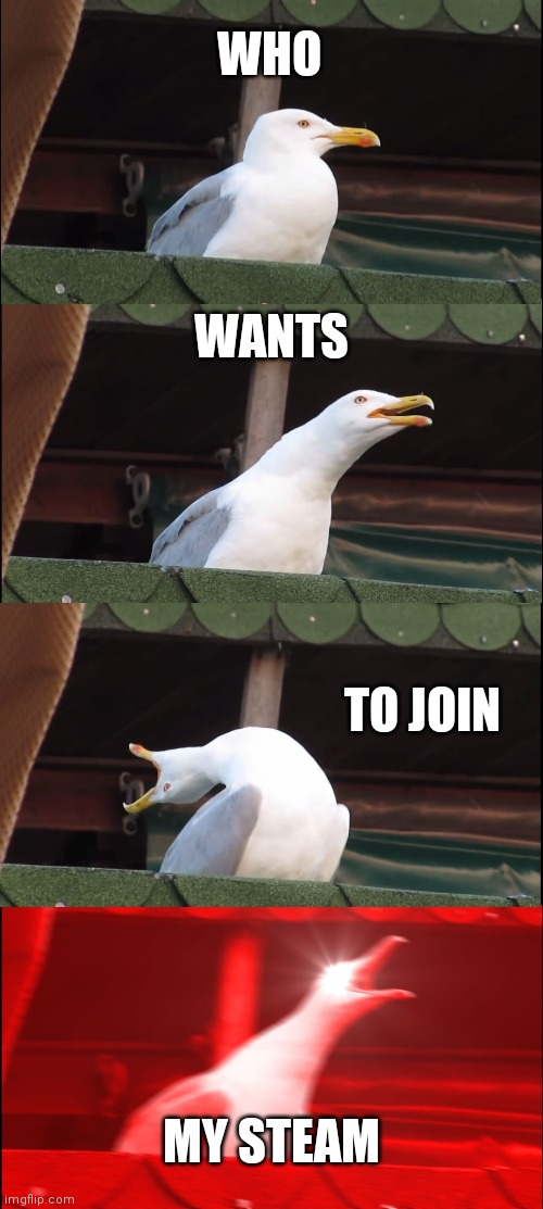 Join requests for chapter one. |  WHO; WANTS; TO JOIN; MY STEAM | image tagged in memes,inhaling seagull | made w/ Imgflip meme maker