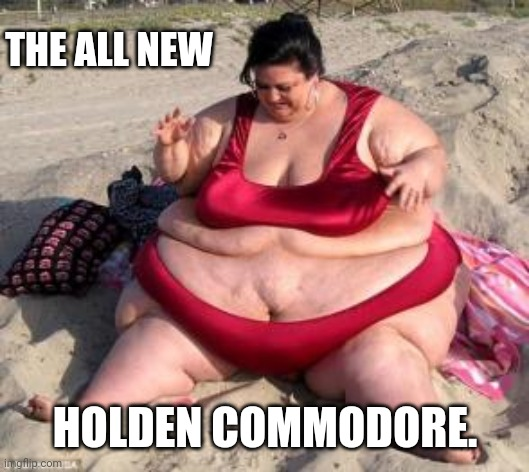 Holden win |  THE ALL NEW; HOLDEN COMMODORE. | image tagged in cars,australia | made w/ Imgflip meme maker