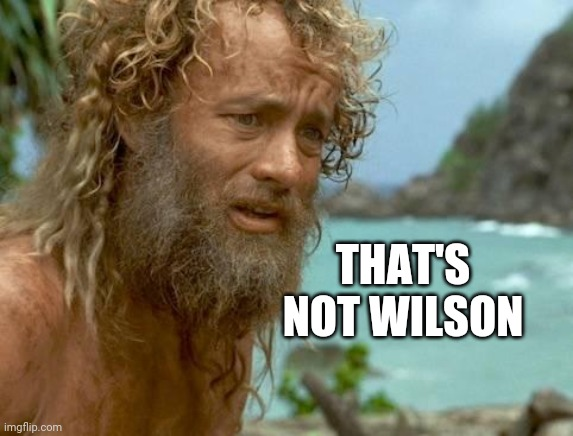 castaway | THAT'S NOT WILSON | image tagged in castaway | made w/ Imgflip meme maker
