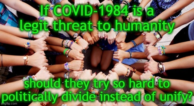 If COVID-1984 is a legit threat... |  If COVID-1984 is a legit threat to humanity; should they try so hard to politically divide instead of unify? | image tagged in the call for unity,covid-19,hypocrisy,division,threat to humanity,politics | made w/ Imgflip meme maker