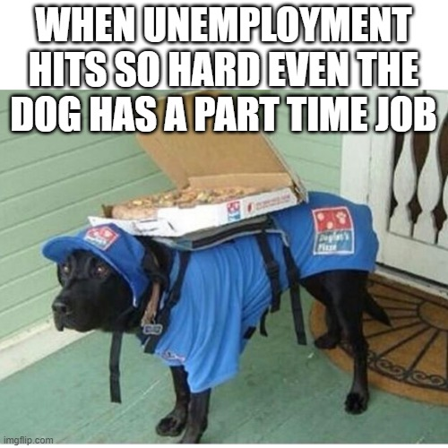 Pizza Dog is here to help |  WHEN UNEMPLOYMENT HITS SO HARD EVEN THE DOG HAS A PART TIME JOB | image tagged in unemployment,funny dogs,dog joke | made w/ Imgflip meme maker