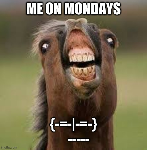 Yes sir |  ME ON MONDAYS; {-=-|-=-}     ----- | image tagged in horse,memes | made w/ Imgflip meme maker
