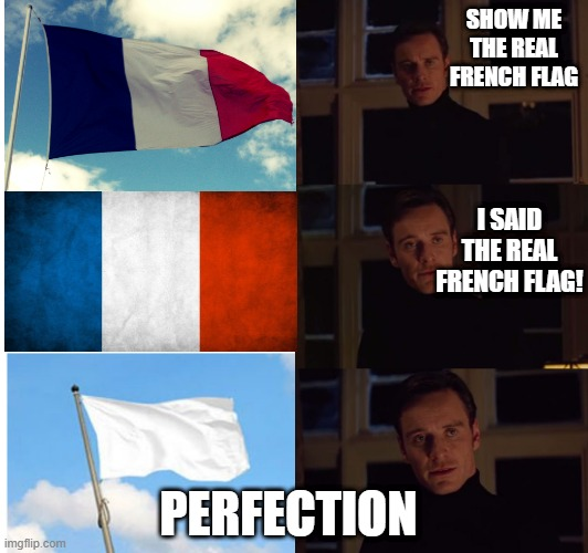 perfection |  SHOW ME THE REAL FRENCH FLAG; I SAID THE REAL FRENCH FLAG! PERFECTION | image tagged in perfection,france,surrender,white flag,french,memes | made w/ Imgflip meme maker