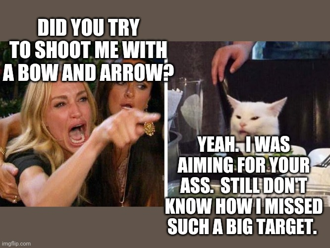 Smudge the cat |  DID YOU TRY TO SHOOT ME WITH A BOW AND ARROW? YEAH.  I WAS AIMING FOR YOUR ASS.  STILL DON'T KNOW HOW I MISSED SUCH A BIG TARGET. | image tagged in smudge the cat | made w/ Imgflip meme maker