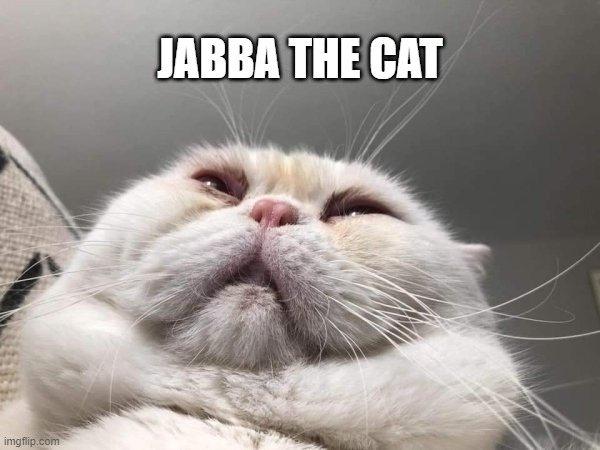 Looks like him, doesn't it? |  JABBA THE CAT | image tagged in funny,star wars,jabba the hutt,jabba,cats,fat cat | made w/ Imgflip meme maker