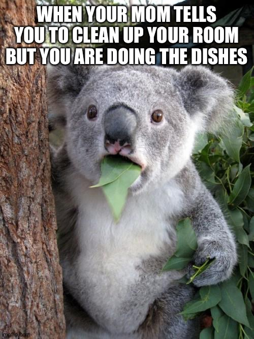 Hoi |  WHEN YOUR MOM TELLS YOU TO CLEAN UP YOUR ROOM BUT YOU ARE DOING THE DISHES | image tagged in memes,surprised koala | made w/ Imgflip meme maker