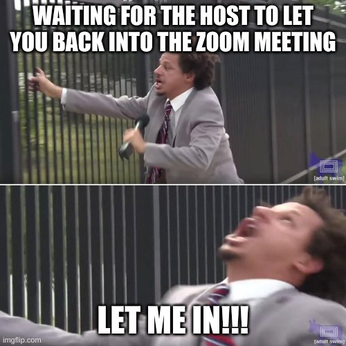 Zoom Life |  WAITING FOR THE HOST TO LET YOU BACK INTO THE ZOOM MEETING; LET ME IN!!! | image tagged in eric andre let me in blank | made w/ Imgflip meme maker
