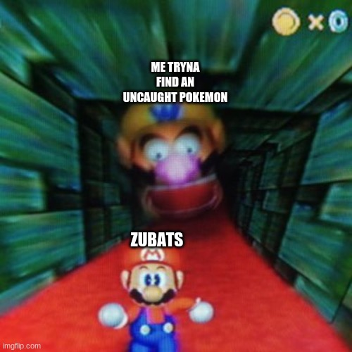Personalized Mario 64 |  ME TRYNA FIND AN UNCAUGHT POKEMON; ZUBATS | image tagged in personalized mario 64 | made w/ Imgflip meme maker