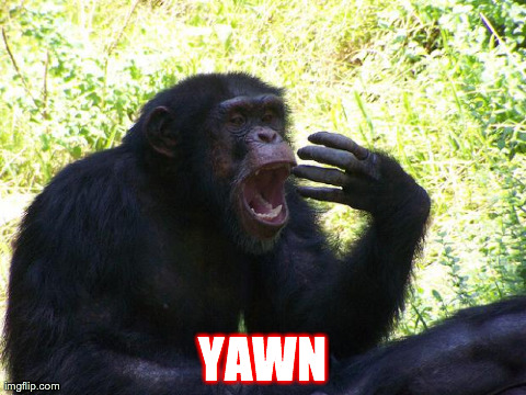 YAWN | image tagged in chimp | made w/ Imgflip meme maker