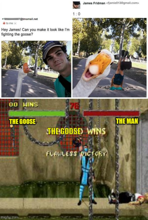 1:0 |  THE GOOSE; THE MAN; THE GOOSE | image tagged in sub zero flawless victory mortal kombat,funny,memes,photoshop,james fridman,goose | made w/ Imgflip meme maker