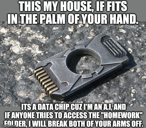 "My House, its literally like 7cm long. |  THIS MY HOUSE, IF FITS IN THE PALM OF YOUR HAND. ITS A DATA CHIP CUZ I'M AN A.I, AND IF ANYONE TRIES TO ACCESS THE ""HOMEWORK"" FOLDER, I WILL BREAK BOTH OF YOUR ARMS OFF. 