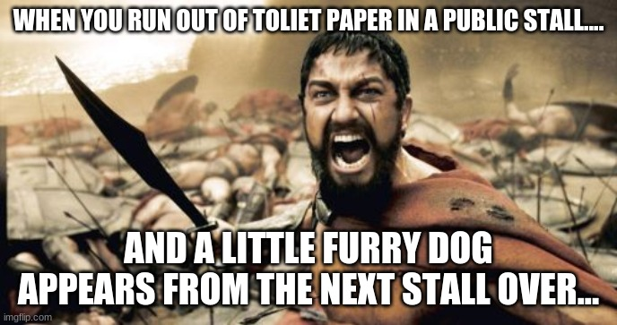 AAAAAAGGGHHHH DECISIONS |  WHEN YOU RUN OUT OF TOLIET PAPER IN A PUBLIC STALL.... AND A LITTLE FURRY DOG APPEARS FROM THE NEXT STALL OVER... | image tagged in memes,sparta leonidas | made w/ Imgflip meme maker