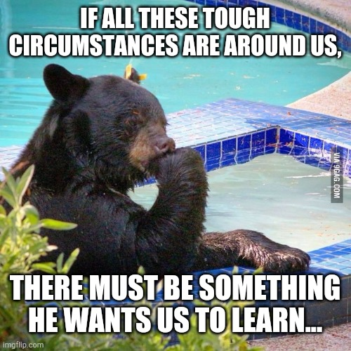Ponder bear | IF ALL THESE TOUGH CIRCUMSTANCES ARE AROUND US, THERE MUST BE SOMETHING HE WANTS US TO LEARN... | image tagged in ponder bear | made w/ Imgflip meme maker