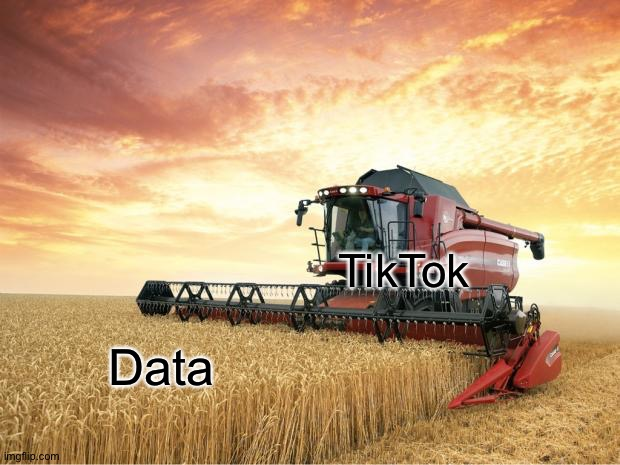 Harvest | TikTok Data | image tagged in harvest | made w/ Imgflip meme maker