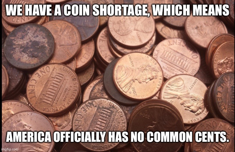 Penny shortage |  WE HAVE A COIN SHORTAGE, WHICH MEANS; AMERICA OFFICIALLY HAS NO COMMON CENTS. | image tagged in penny | made w/ Imgflip meme maker