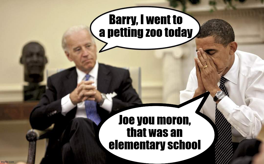 Joe Biden likes to pet thing like little kids. |  Barry, I went to a petting zoo today; Joe you moron, that was an elementary school | image tagged in creepy joe biden,moron,biden obama | made w/ Imgflip meme maker