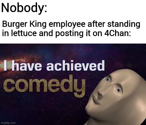 NUMBER FIFTEEN |  Nobody:; Burger King employee after standing in lettuce and posting it on 4Chan: | image tagged in memes,i have achieved comedy,4chan,burger king,funny | made w/ Imgflip meme maker