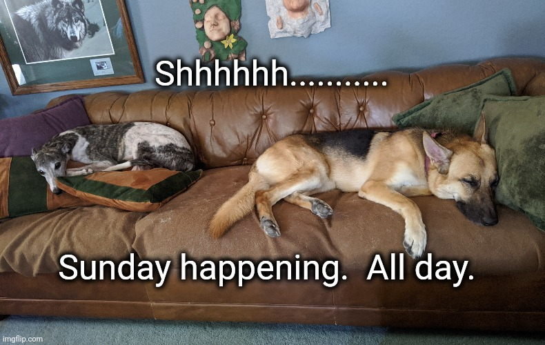 Sunday happening |  Shhhhhh........... Sunday happening.  All day. | image tagged in shhhh,quiet,sunday | made w/ Imgflip meme maker