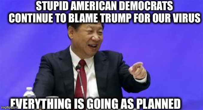 STUPID AMERICAN DEMOCRATS CONTINUE TO BLAME TRUMP FOR OUR VIRUS EVERYTHING IS GOING AS PLANNED | image tagged in xi jinping laughing | made w/ Imgflip meme maker