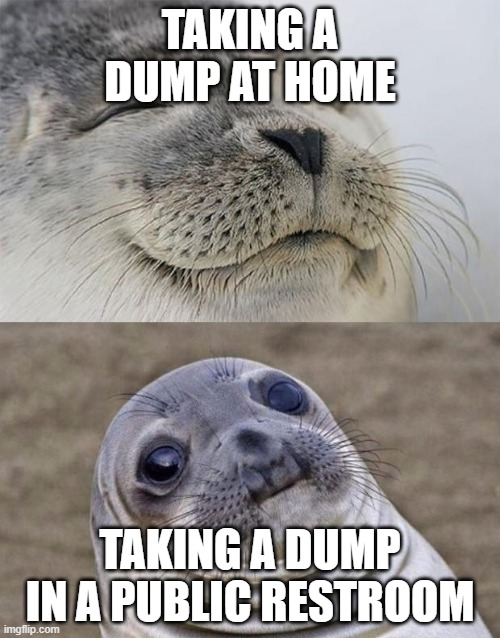 We've all been there. |  TAKING A DUMP AT HOME; TAKING A DUMP IN A PUBLIC RESTROOM | image tagged in memes,short satisfaction vs truth,bathroom,bathroom humor,awkward moment sealion | made w/ Imgflip meme maker
