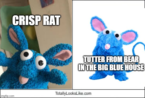 oh come on, they totally look like each other! |  CRISP RAT; TUTTER FROM BEAR IN THE BIG BLUE HOUSE | image tagged in crisp rat,bear in the big blue house,memes,totally looks like | made w/ Imgflip meme maker