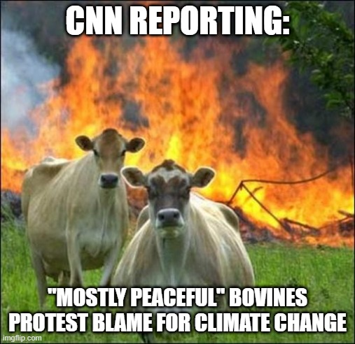 """Mostly Peaceful"" 