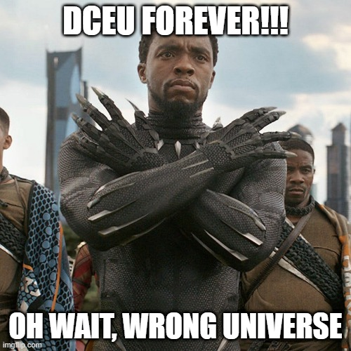 LOL |  DCEU FOREVER!!! OH WAIT, WRONG UNIVERSE | image tagged in wakanda forever,memes,funny,black panther,dceu forever,movies | made w/ Imgflip meme maker