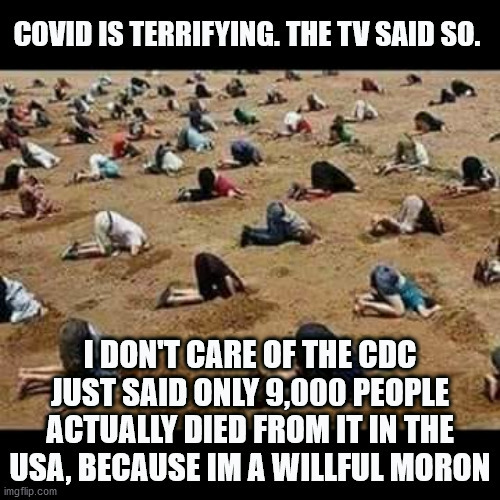 Covid 19 Is A hoax |  COVID IS TERRIFYING. THE TV SAID SO. I DON'T CARE OF THE CDC JUST SAID ONLY 9,000 PEOPLE ACTUALLY DIED FROM IT IN THE USA, BECAUSE IM A WILLFUL MORON | image tagged in covid-19,covidhoax,covid scam,covid hoax,uncle sam i want you to mask n95 covid coronavirus | made w/ Imgflip meme maker