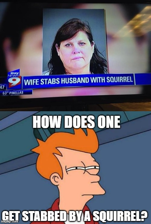 HOW DOES ONE; GET STABBED BY A SQUIRREL? | image tagged in futurama fry,news fail,squirrel,i'm sorry what,stab,news | made w/ Imgflip meme maker