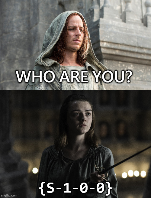 Who are you? Nobody. |  WHO ARE YOU? {S-1-0-0} | image tagged in nerd,windows,nobody,game of thrones,arya stark | made w/ Imgflip meme maker